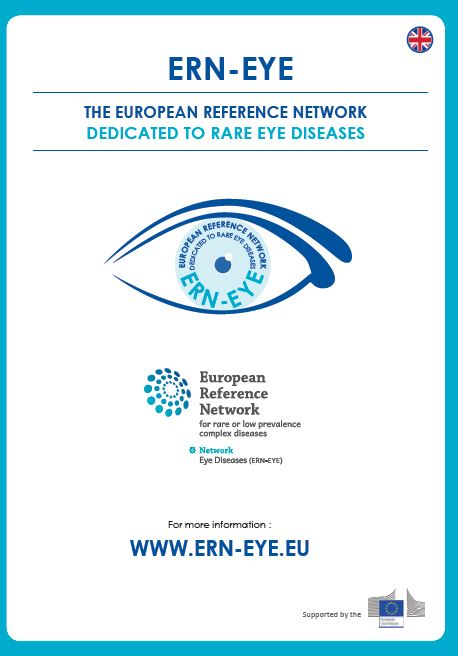 ERN-EYE Brochure