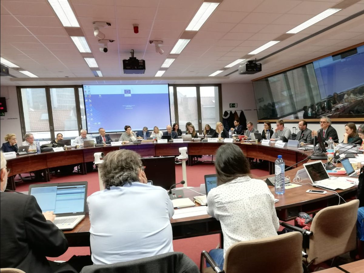 ERN - Meeting of the coordinators
